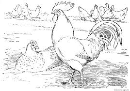 Farm Animal S For Preschool9cc8 Coloring Pages Print Download 461 Prints