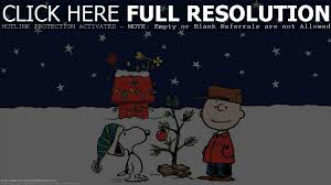 Charlie Brown Christmas Tree Home Depot by Christmas Tree Hill York Pa Christmas And Accessories