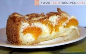 hefe und aprikosenkuchen geben jedem kuchen eine chance