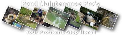 Pond Maintenance, Cleaning, Repair Contractors-Ohio (OH) - Pond ... Aquatic Patio Pond Kit Aquascapes Aquascapepro Waterfall Rock Cleaner Aquablox Modular Water Storage System 23 Best Gardens Ponds Images On Pinterest Gardens Ohio Installationmaintenance Contractobuildinstallers The Best 28 Of Meyer Aquascapes Pond Water Urchill Chair Living Spaces Recent Projects Aquascape Aquabasin Medium Creations Deco Planter Project Image Gallery 60 Before And After