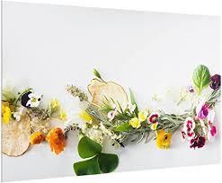 spritzschutz glas für küche herd 59 cm x 90 cm frische kräuter bild motiv