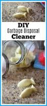 Kitchen Sink Stinks When Running Water by Best 20 Garbage Disposal Smell Ideas On Pinterest Garbage