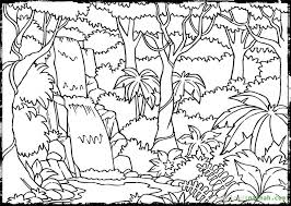 Scene Coloring Pages Jungle Scenery
