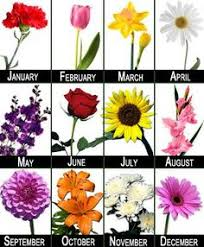 Birthday Flowers by Month