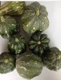 Homemade Fertilizer For Pumpkins by Tea With Tina To Pumpkin Or Not To Pumpkin U2026