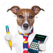 chien comptable avec un crayon et une calculatrice banque d images