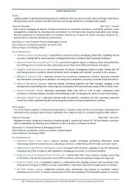 Narrative Resume Samples Packed With Finance Manager Sample Accountant Financial