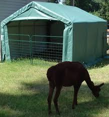 Shelterlogic Run In Sheds by 12 U0027x12 U0027x8 U2032 Run In Shelter House Style Nw Quality Sheds