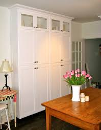 Wall Pantry Cabinet Ideas by Stand Alone Pantry Cabinets My Pantry I Wanted A Decent Size