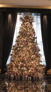 Nyc 311 Christmas Tree Disposal by Best 25 Trump International Ideas On Pinterest Modern Wine