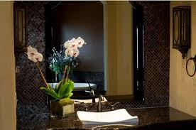 Good Plants For Windowless Bathroom by Best Plants That Suit Your Bathroom Fresh Decor Ideas
