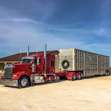 Kenworth Custom W900L Bull Hauler | Bad Ass Semi | Pinterest ... Semi Hauling Cattle Overturns On I15 Smashing Onto Car With 3 The Worlds Most Recently Posted Photos Of Hauler And Livestock These Are People Who Haul Our Food Across America Salt Npr No 11 Jbs Carriers Beef Central Kenworth Custom W900l Bull Bad Ass Semi Pinterest Blhauler Manners Brigshots Best Photos Flickr Hive Mind Mf Western Toy Kids Bull Hauler Truck Peterbilt Child 2 Pk 10 Top Paying Driving Specialties For Commercial Drivers Norstar Beds Iron Trailers Livestock Groups Seek Waiver From Trucking Rules Feedstuffs Cattle Pots Home Facebook