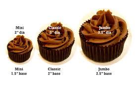 12 Big Dimensions Cupcakes Photo