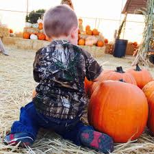 Pumpkin Patch Fresno Clovis by Longhorn Feed Pumpkin Patch And Christmas Trees Home Facebook