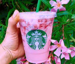 The Truth About Starbucks Pink Drink
