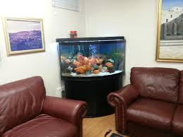 Spongebob Fish Tank Decor Set by Best Design Fish Tank In Living Room U2013 Radioritas Com