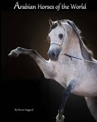 Arabian Horse World The Best Amazon Price In SaveMoneyes