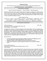 Project Manager Resume Summary Statement New Objective Examples For Construction Supervisor Professional