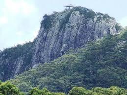 100 Mount Tinbeerwah Tewantin National Park Visit Sunshine Coast