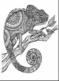 Beautiful Adult Coloring Pages Animals With Free And Pdf