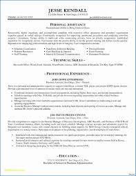 Job Resume Samples Professional Free Bank Statement Template Elegant ... Summary Example For Resume Unique Personal Profile Examples And Format In New Writing A Cv Sample Statements For Rumes Oemcavercom Guide Statement Platformeco Profiles Biochemistry Excellent Many Job Openings Write Cv Swnimabharath How To A With No Experience Topresume Informative Essays To