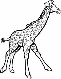 Awesome Giraffe Coloring Pages With Zoo Animal And Animals Games