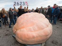 Largest Pumpkin Ever Carved by World U0027s Largest Pumpkin World Record Broken At European