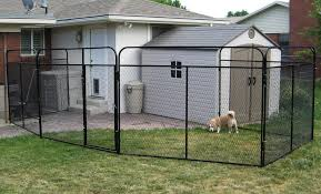 K9 Kennel Store Photo Gallery Whosale Custom Logo Large Outdoor Durable Dog Run Kennel Backyard Kennels Suppliers Homestead Supplier Sheds Of Daytona Greenhouses Runs Youtube Amazoncom Lucky Uptown Welded Wire 6hwx4l How High Should My Chicken Run Fence Be Backyard Chickens Ancient Pathways Survival School Llc Diy House Plans Deck Options Refuge Forums Animal Shelters The Barn Raiser In Residential Industrial Fencing Company