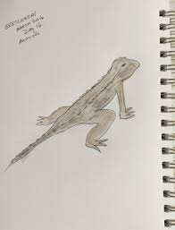 March Sketch-a-Day Session | Skillshare Projects Roadsendnaturalist Roads End Naturalist Raptormaniacs San Diego Zoo Part I Reptile Mesa Lovely Plantings My Adventures In Gardening Big White Throat Monitor Lizard Reptilians Do It Best 1985 Best Amazing Lizards Images On Pinterest Chameleons Lorde Archives The Key Digital Wallpaper Beautiful Ldon V House Pet Updates Chris And Ash Discussions Of Exotic Species Music Concerts Life Dead Milkmen Laurel Hill July 2010