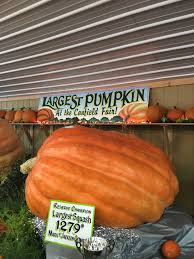 Jt Pumpkin Patch Lincoln Ne by Passports U0026 Postcards The Global Adventures Of A Midwestern U2026