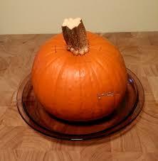 Pumpkin Puree Vs Pumpkin Pie Filling by Kick The Can Ned Pumpkin U2013 The Zero Waste Chef