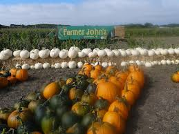 Half Moon Bay Pumpkin Patch 2017 by A Great Time For Camping At Half Moon Bay 510 Families
