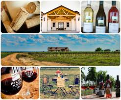 Pilot Knob Winery Texas