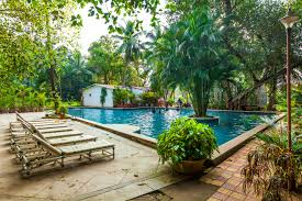 OYO Flagship 14391 Calangute Eden Garden, Flagship Goa, Book ... 25 Off Exotic Metal Works Coupons Promo Discount Codes Affordable Essential Oils Diy For Beginers With Edens Garden Prime Natural Spicy Saver Oil Blend 10ml Get W Skinmedix Coupon Discount Codes Fyvor Peeps And Company Coupon Energy Ogre Code 2019 Of Eden Zulily February Oreilly Auto Parts Hard Candy Promo Black Friday 5 Ways To Use Allergies