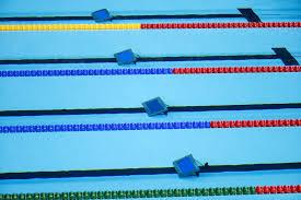 Check The Underwater Monitor