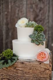 White Simple Minimal Round Rustic Flower Succulent Outdoor Wedding Cake