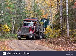 Western Star Dump Truck Hauling A Log Skidder On A Logging Road ... Western Star Trucks Wikiwand Weernstar Dump Pinterest 2017 Ford F750 Xl 600a Dump Truck For Sale 1006 Used Trucks Of Montana Western Star 4900 Tdrive Cat Ap1055b Paver Laying Mack R Model Rolling Coal Coub Gifs With Sound Trucking Severe Duty And Tippers 2018 4700sb 540900 Triaxle Truck Cambrian Centrecambrian