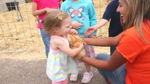 Albuquerque Pumpkin Patch 2015 by Galloping Grace Youth Ranch Hosts Annual Pumpkin Patch Krqe News 13
