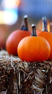 Hartsburg Pumpkin Festival 2015 Dates by Orange Halloween Lights And A Bright Orange Pumpkin Falloween
