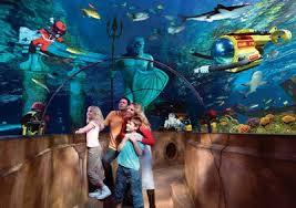 sea world aquarium san diego 1000 aquarium ideas