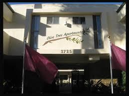 Olive Tree Apartments Rentals Torrance CA