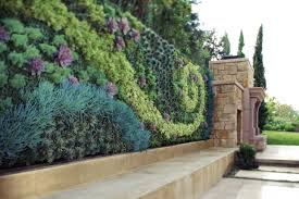 Living Wall Planters lovely Grovert Living Wall Planter Nice