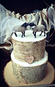 Country Themed Wedding Cakes Rustic Bridal Shower Cake Toppers Humorous