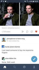 My Dash Is Telling Me That This Dude Mulling Over Your Request Bucky Plums Barnes Persephone Here Omg Siren Kitten His