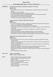 Project Security Manager Resume Samples