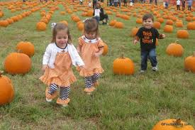 Pumpkin Patches Around Fort Worth Tx by Flower Mound Pumpkin Patch Spot To Visit With Tots U2013 Four To Adore