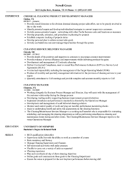 Download Cleaning Manager Resume Sample As Image File