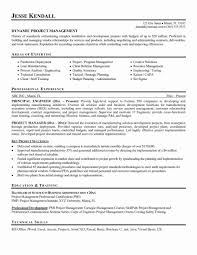 Project Manager Resume Example Examples Management Awesome Fresh Samples Program Of And M Large Size