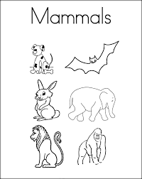 Free Mammals Coloring Pages For Preschoolers