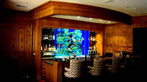 The Aquarium Connection - Beautiful Bar Aquarium - YouTube I Really Want A Jellyfish Aquarium Home Pinterest Awesome Fish Tank Idea Cool Ideas 6741 The Top 10 Hotel Aquariums Photos Huffpost Diy Barconsole Table Mac Marlborough Tank Stand Alex Gives Up Amusing Experiments 18 Best Fish Images On Aquarium Ideas Diy Clear For Life Hexagon Hayneedle Bar Custom Tanks Ponds Designs For Freshwater Modern 364 And Tropical Ov Cylinder 2